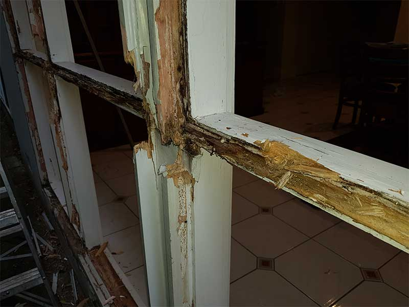 Window Repair Collinswood